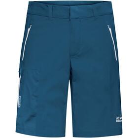 Jack Wolfskin Overland Shorts Herrer, blå